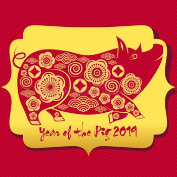 2019 Lunar New Year
