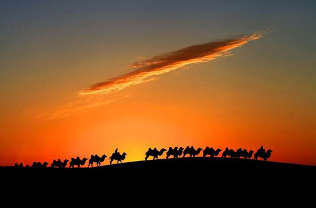 China's Top 10 in The World-The oldest trade channel in the world—Silk Road