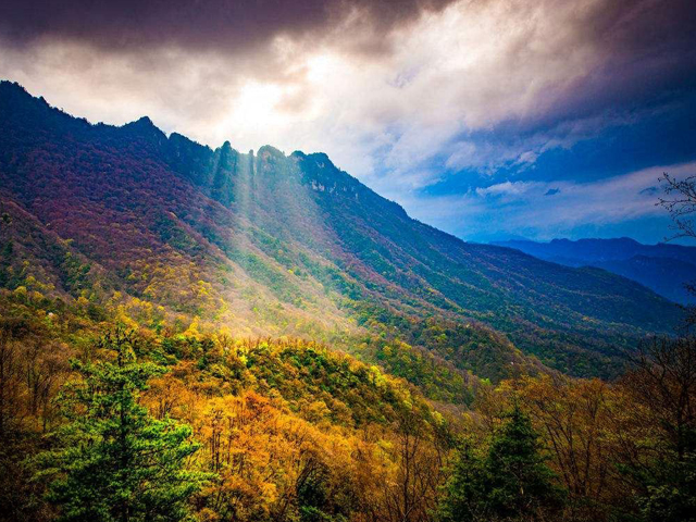 Top 10 Most Beautiful Forest Parks in China