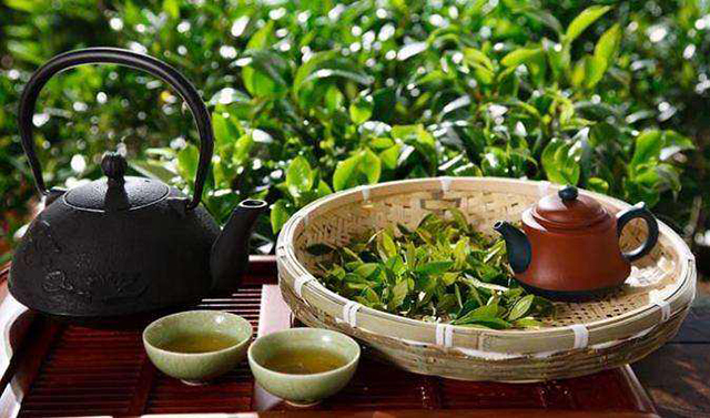 top 10 famous tea in china