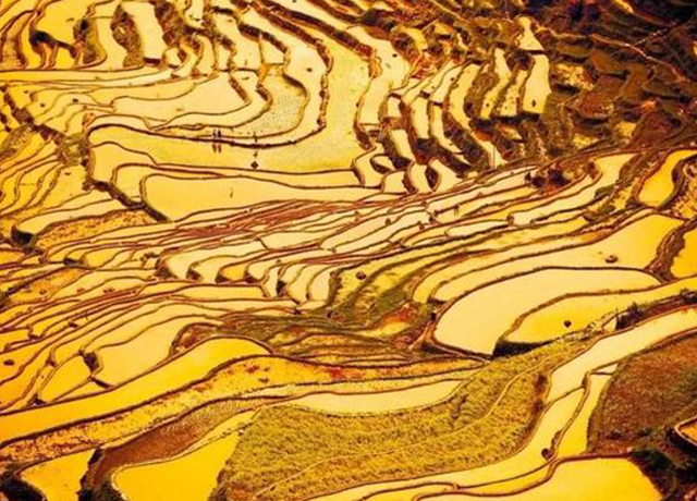 10 Most Beautiful Terraces In China
