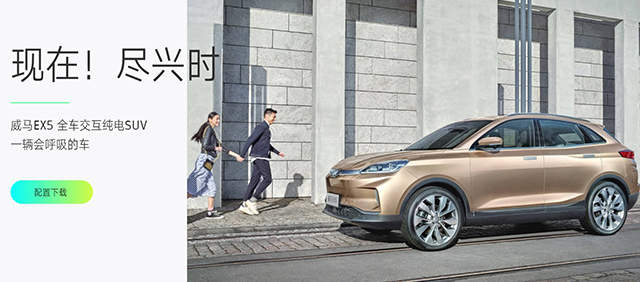 New Energy Vehicle Brand in china-WELTMEISTER