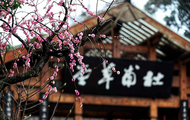 Top 10 Most Beautiful Plum Gardens in China-Chengdu Caotang Temple