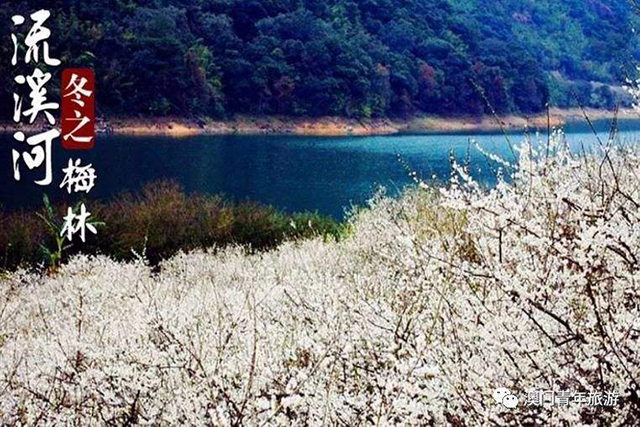 Top 10 Most Beautiful Plum Gardens in China-liuxi river