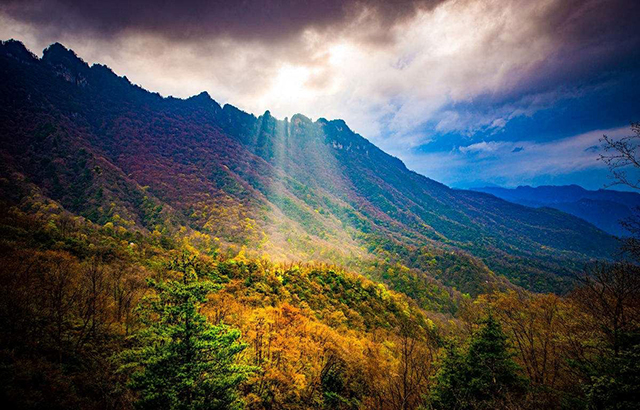 Top 10 Most Beautiful Forest Parks in China-Shennongjia National Forest Park