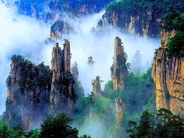 Top 10 Most Beautiful Forest Parks in China-Zhangjiajie National Forest Park