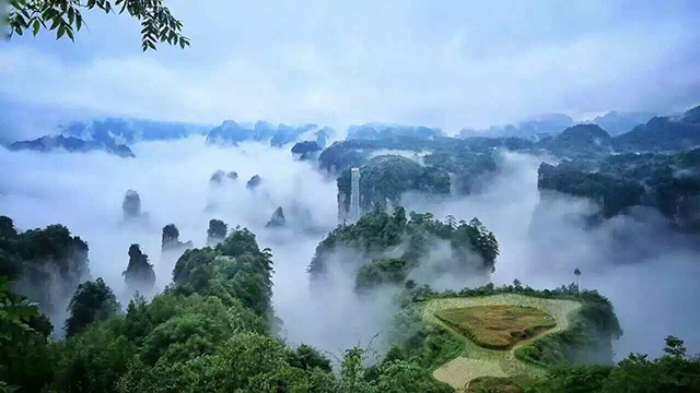 Top 10 Most Beautiful Forest Parks in China-Zhangjiajie Tianmenshan National Forest Park