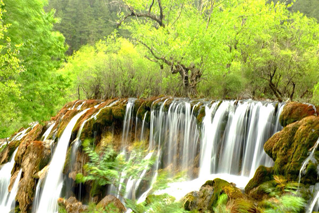 China's Top Ten Waterfalls-Sichuan Jiuzhaigou Shuzheng Waterfall