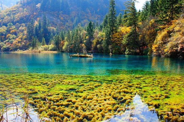Top 10 Love Holy Places in China-Jiuzhaigou