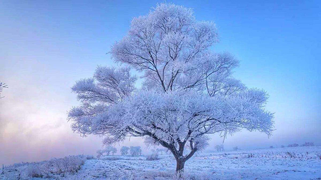 China's Four Natural Wonders-Jilin Smog Spectacle