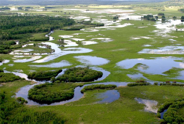 Top 10 Tourist Attractions in Heilongjiang-Dazhan River National Forest Park